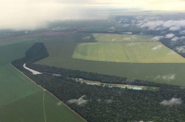 meio ambiente, desmatamento, terras, área, propriedade rural, lavoura