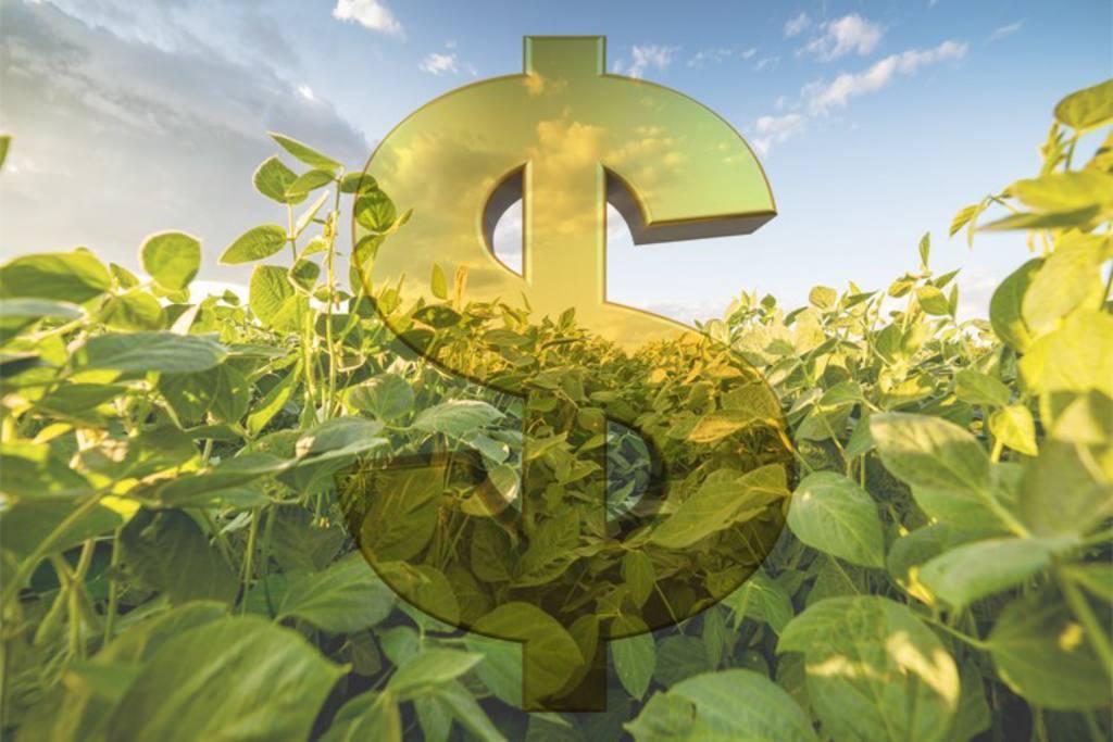 reforma tributária, dinheiro, safra, recursos, plano safra, reforma tributária, mp, crédito, recuperação judicial, agronegócio, funrural, cpr, investimento, crédito, cbios