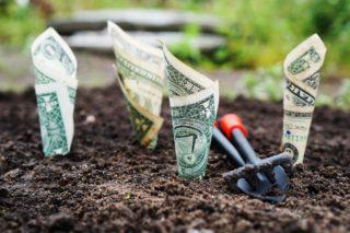 dinheiro, EUA, Estados Unidos, dólar