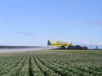 avião agrícola fazendo pulverização aérea aviões agrícolas