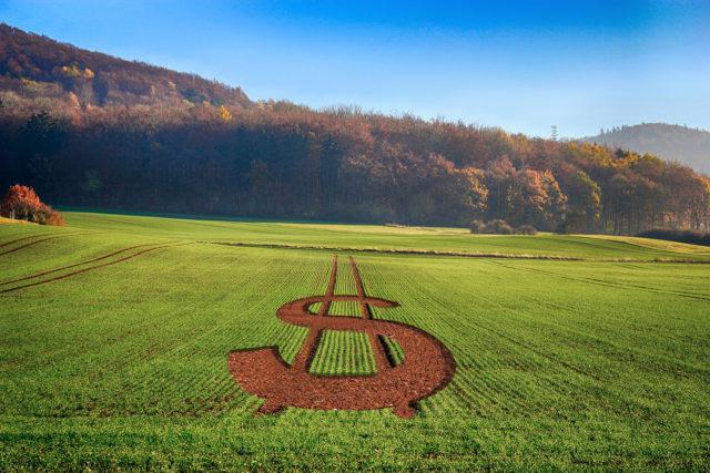 lca, economia, governo, cna, agricultura, mp do agro