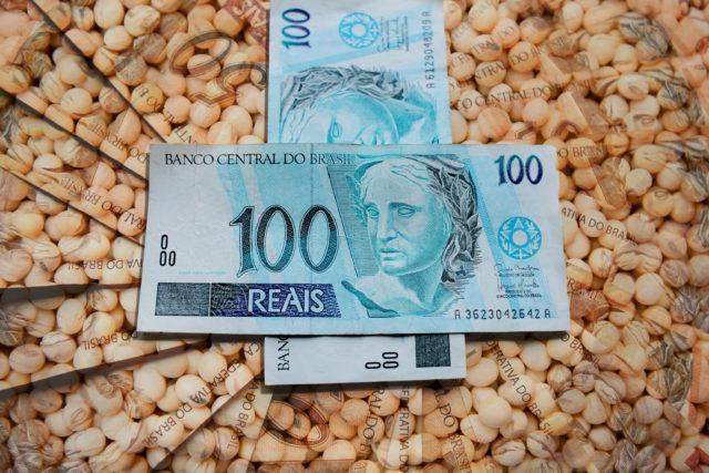 Preço médio da soja bate os R$ 100 e quebra recordes em Mato Grosso, diz Imea – Canal Rural