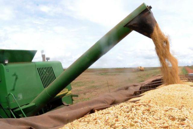 colheita soja, brexit, commodities agrícolas