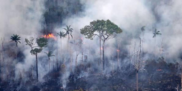 queimadas, incêndio, amazônia