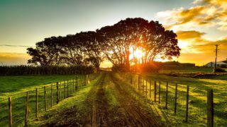 Fazenda sol clima