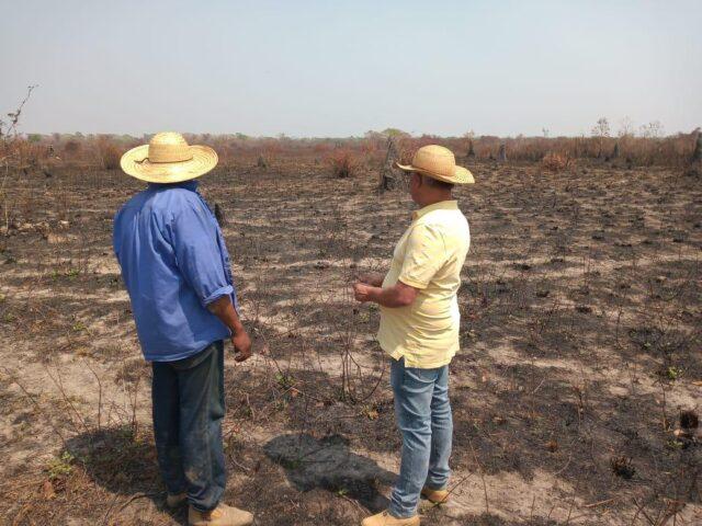 Pantanal pode ganhar legislação própria; entidades divergem sobre iniciativa
