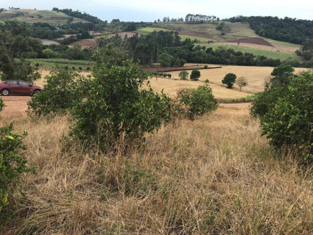paisagem seca pela estiagem