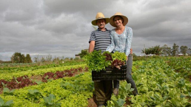 Brasil: Câmara aprova estender auxílio de R$ 600 a agricultores familiares