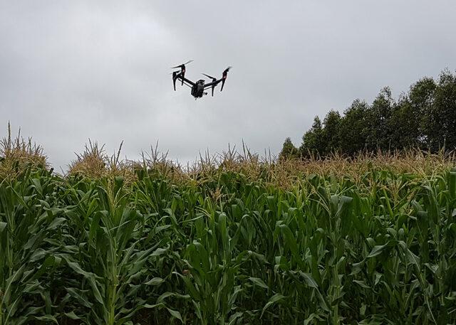 drone linha de plantio tecnologia