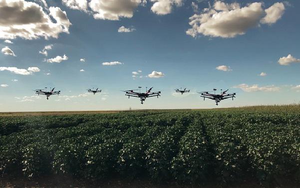 drones monitoram lavoura