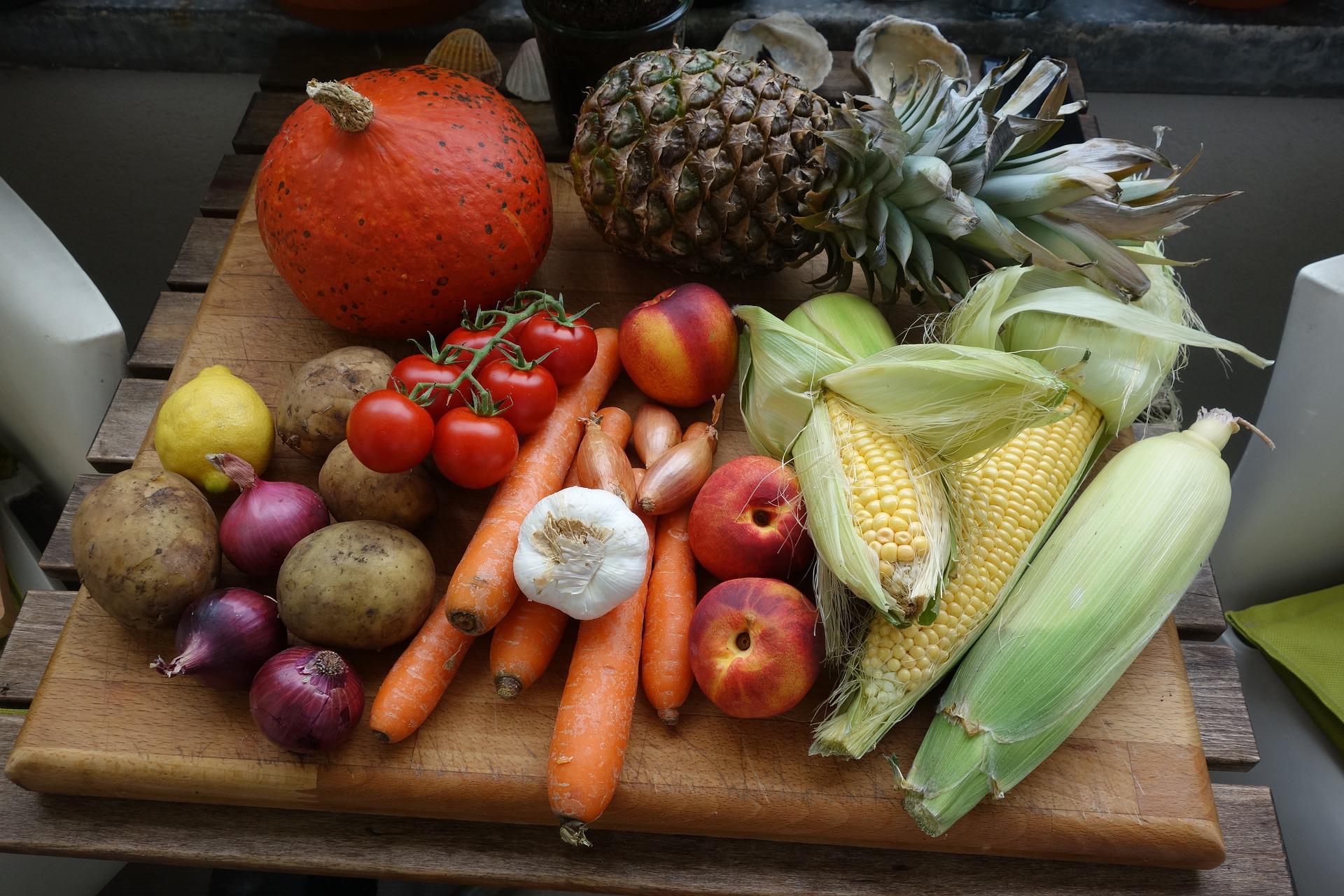 alimentos paa agricultura familiar